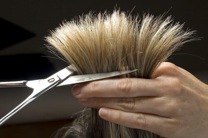 Ревнивый вологжанин отрезал жене волосы