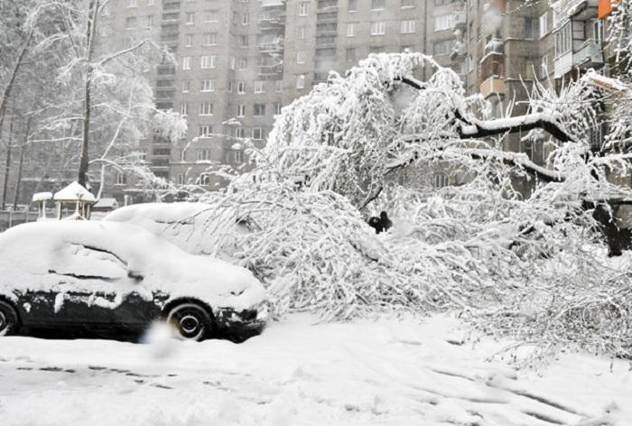 Вологодские районы не получат страховку от стихий, если не платят за официальный прогноз погоды