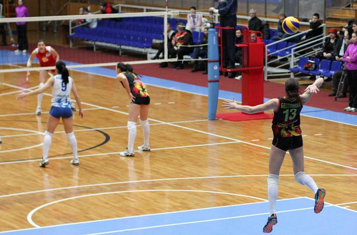 Волейбольная команда «Северсталь» сменила спонсора и название