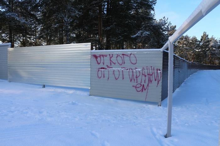 В Вологодской области сельчане вернули себе сосновый бор через прокуратуру