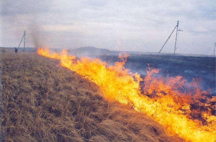 В 2014 году «Вологдаэнерго» на месяц раньше приступил к подготовке к пожароопасному сезону