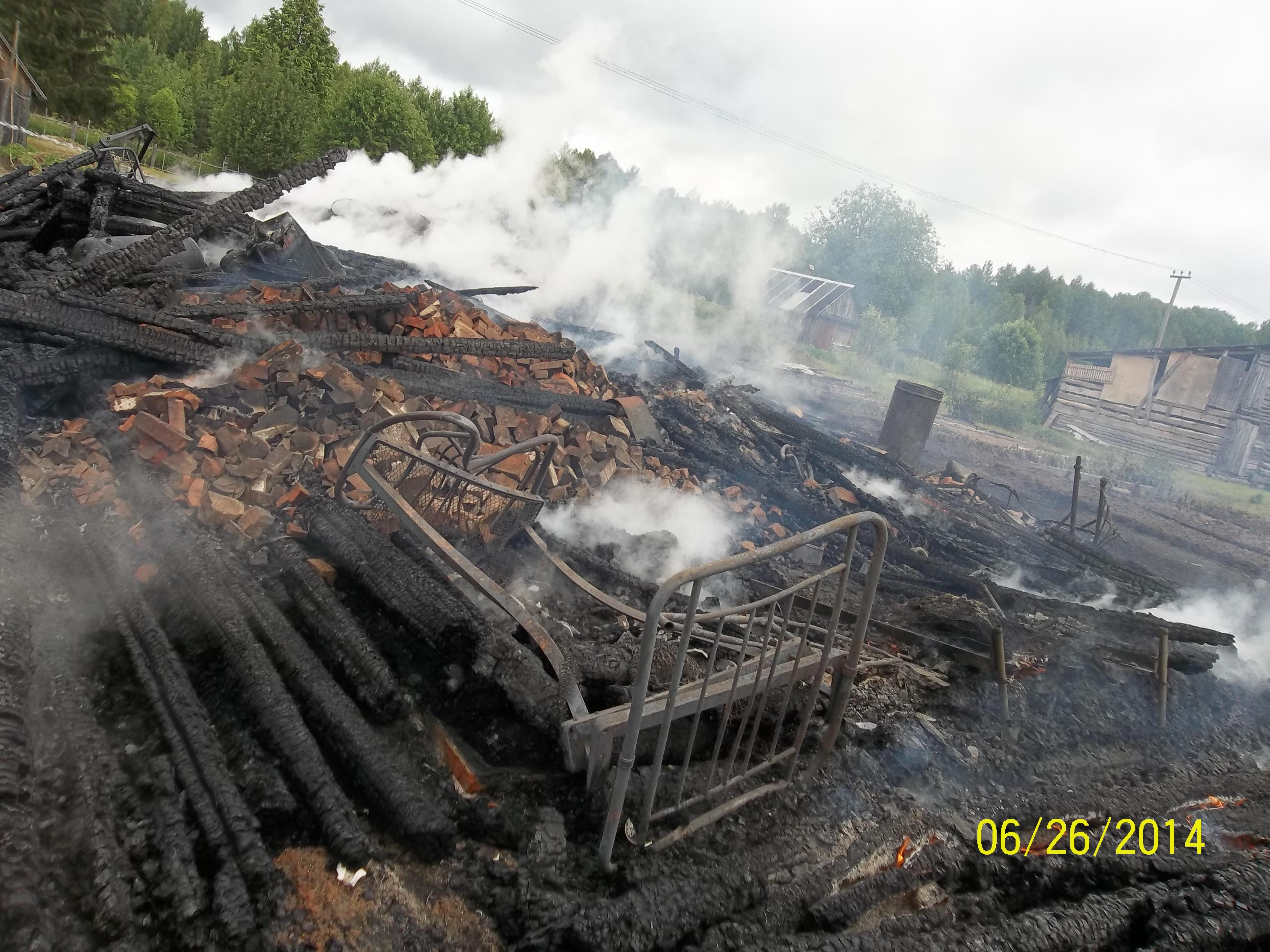 Дом пенсионеров из вологодской деревни сгорел дотла