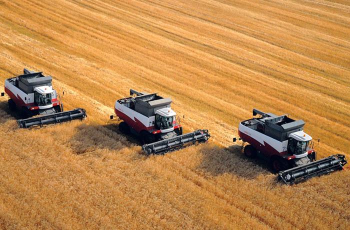 ФСИН займется сельским хозяйством в Вологодской области