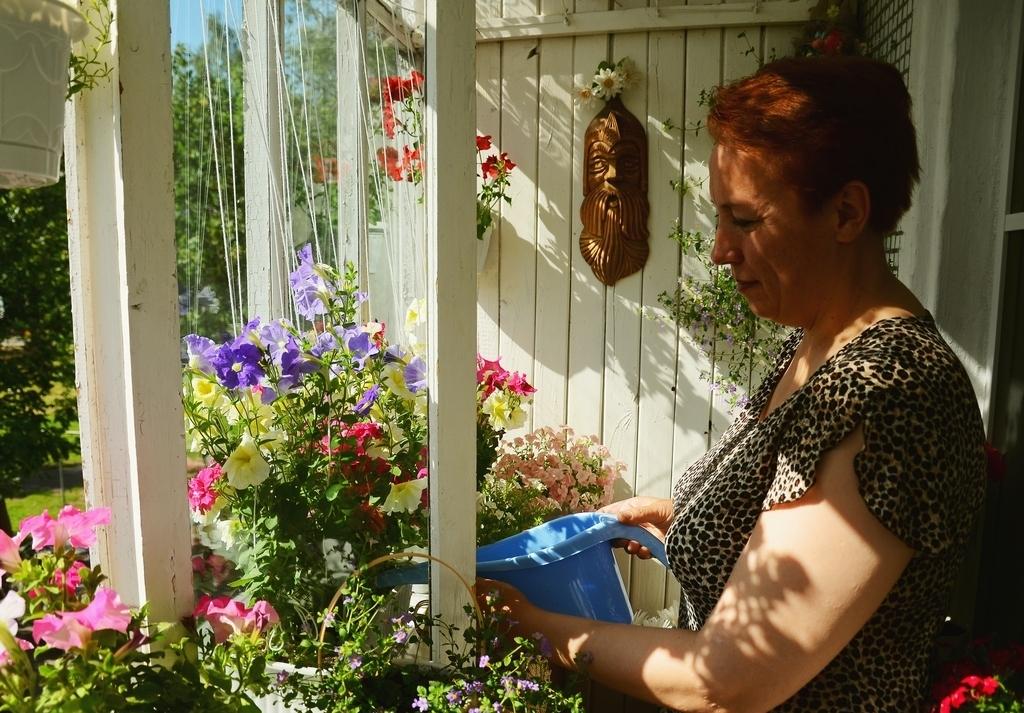 Не только дворы, но и балконы зацвели в Вологде
