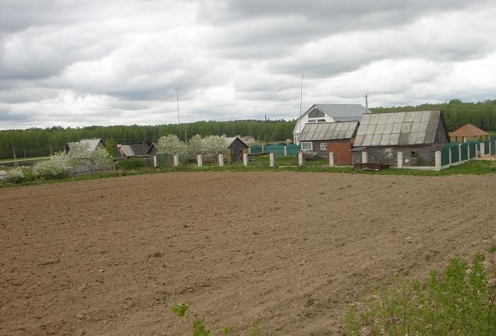 В Вологодской области определят специалистов, которым будут бесплатно выделять землю на селе