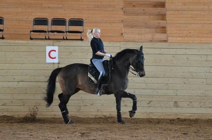 Вологжанки стали призерами межрегиональных соревнований по конному спорту