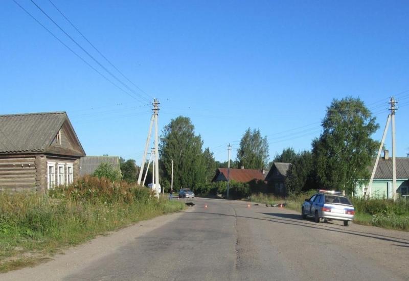 Пьяный водитель сбил лежащего на дороге мужчину в Вологодской области
