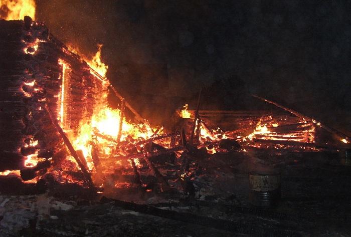 Корова, телята, поросята и курицы погибли на пожарах в Вологодской области
