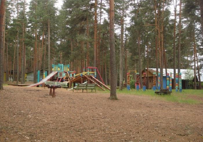 Воспитанники детдома сбежали из детского лагеря «Искра» в Череповецком районе