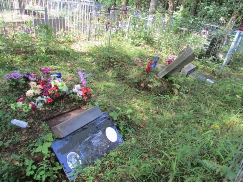 Дети разгромили кладбище в Вологодской области
