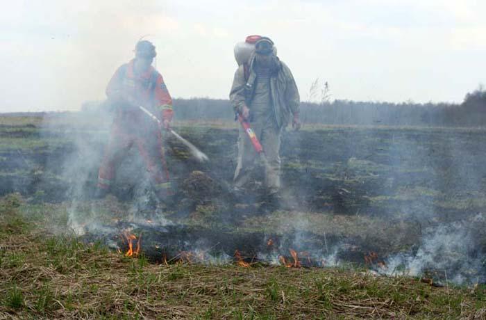 В Вологодском районе вновь горят торфяники