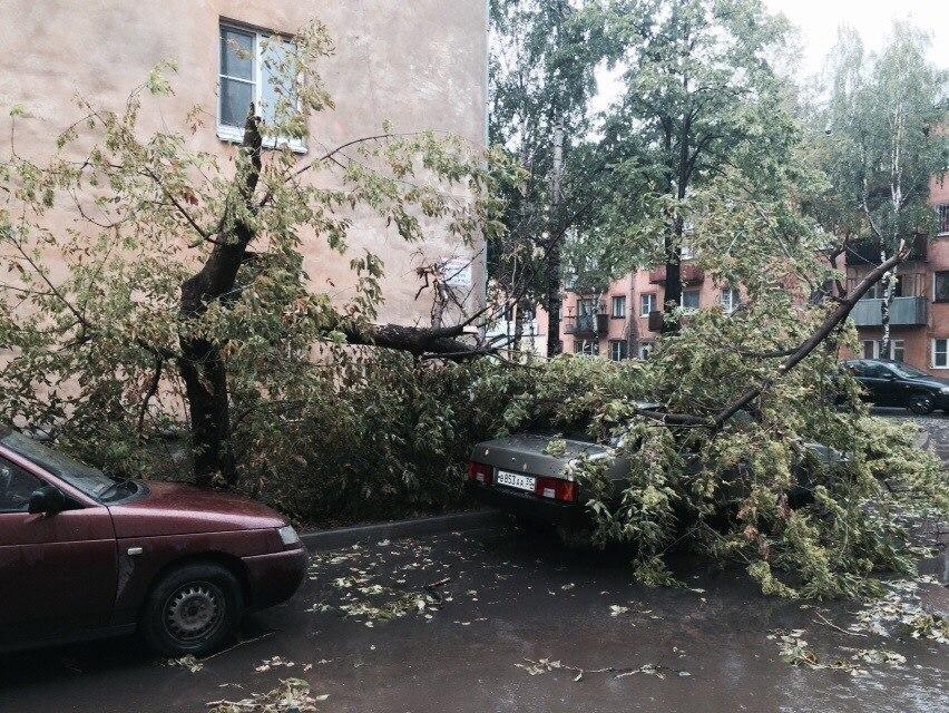 Последствия грозы в Вологде устраняли 5 дней