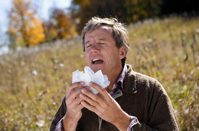 Вологжанам рассказали, как отличить простуду от аллергии