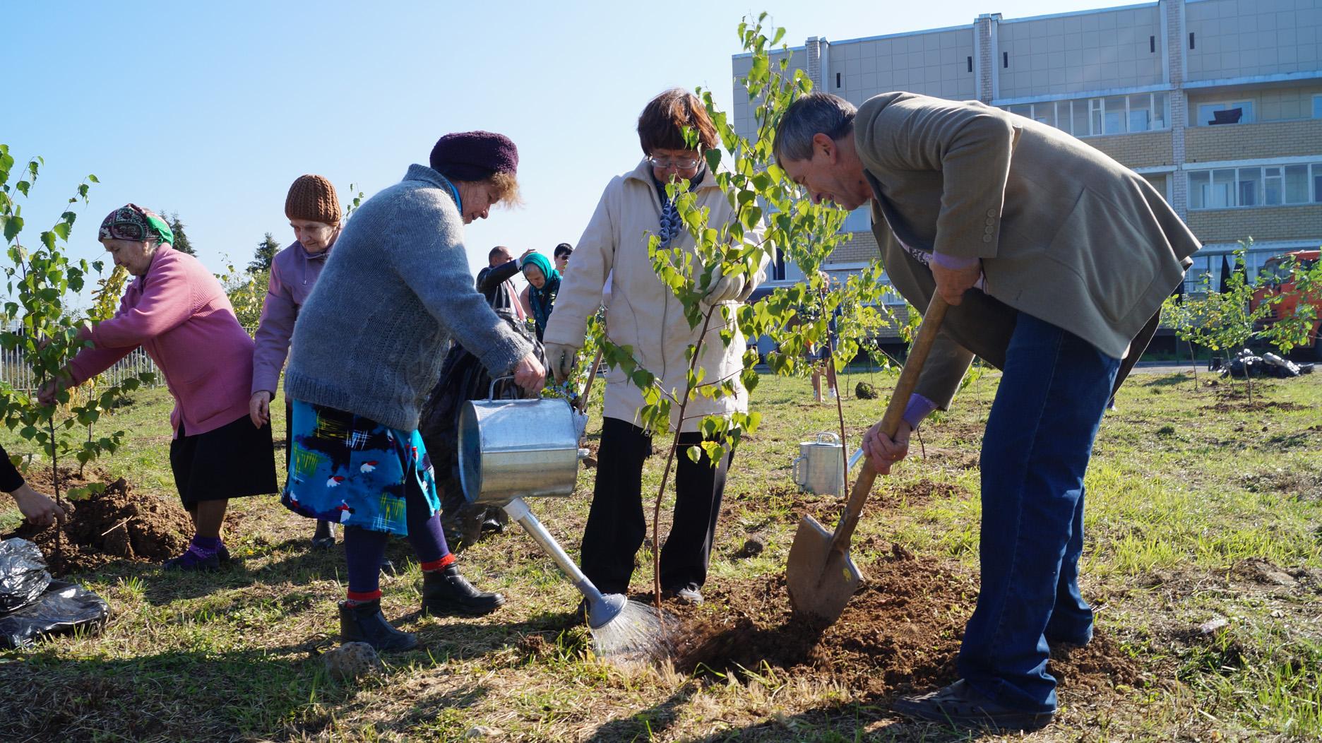 Аллея Победителей под Вологдой пополнилась новыми деревьями