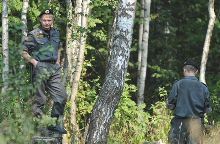 35 человек заблудились за неделю в вологодских лесах