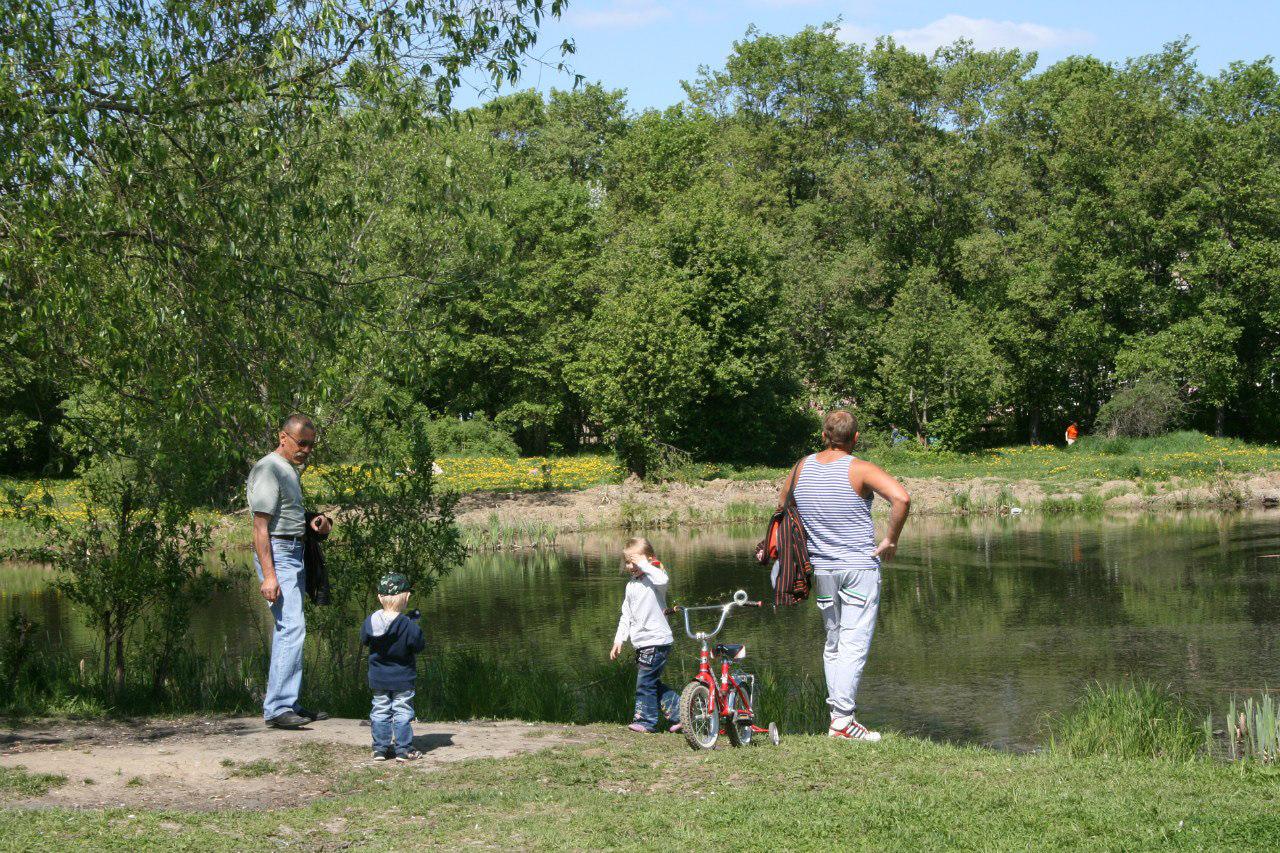 В Вологде собирают подписи за сохранение Ковыринского парка