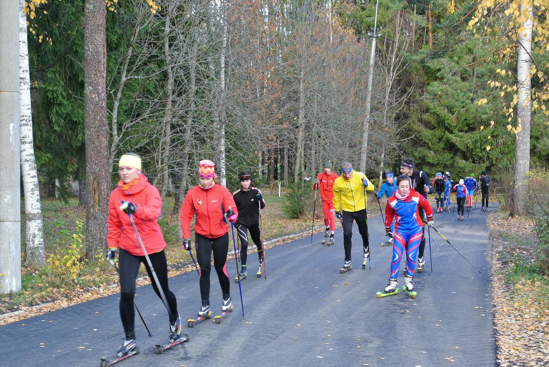 У вологодских спортсменов появилась лыжероллерная трасса