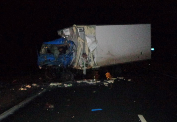Грузовик и фура столкнулись на трассе Вологда - Новая Ладога: оба водителя погибли