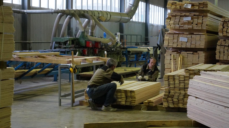 Компании «Биоват-профиль» в Вологде предоставят дополнительный участок под развитие лесопиления