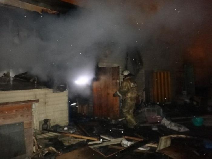 Девять кошек и собака погибли при пожаре в приюте для животных в Череповце