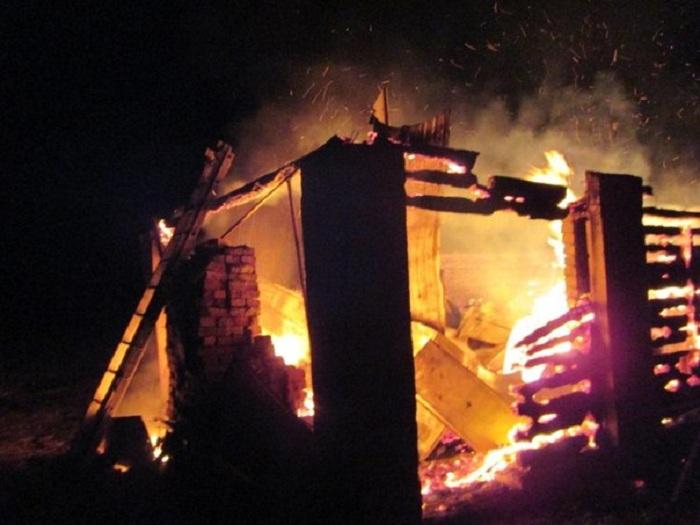 Козы, поросята, куры, кролики и гуси погибли при пожаре в Шекснинском районе
