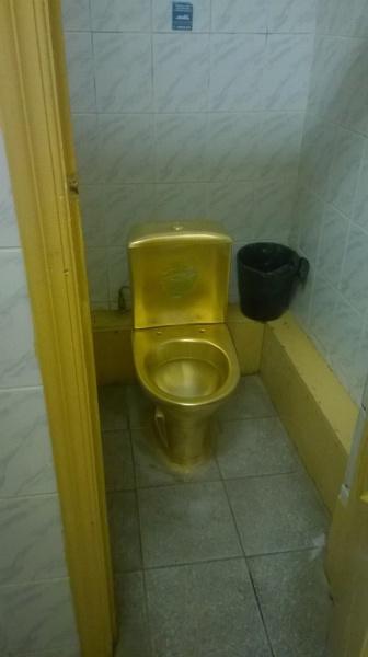 В Вологодском государственном университете появились золотые унитазы
