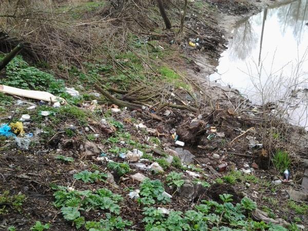В речке Шограш опять грязь, мазут или бензин