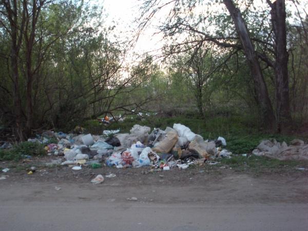 Мусор в городе – мусор в сознании!