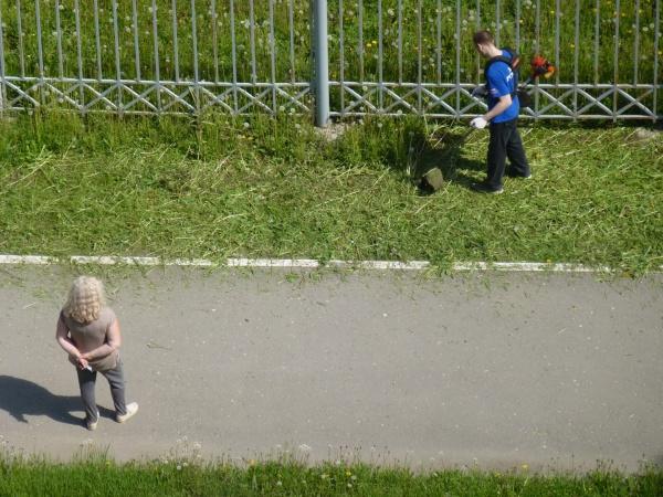 Покос травы с 6 утра на газонах автостоянки Вологодского областного суда