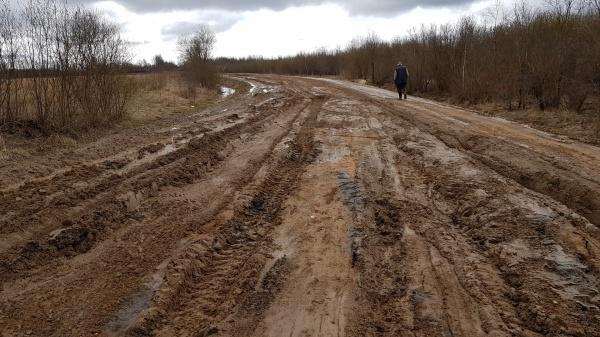 Дорога до Шеломово
