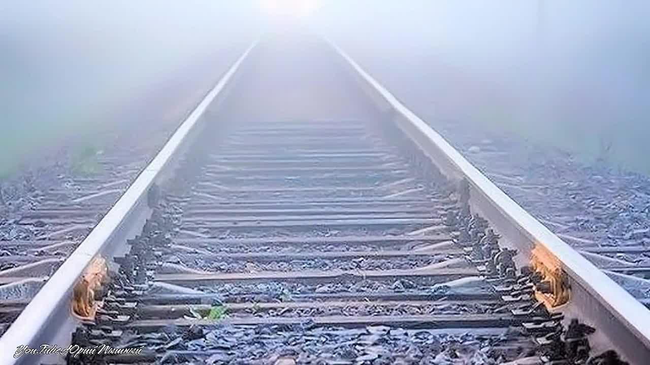 Грузовой поезд насмерть сбил мужчину в Вологодской области