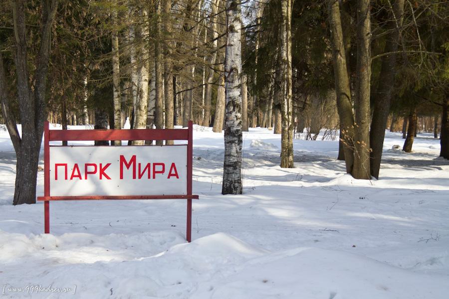 Митинг в защиту парка Мира пройдет в Вологде 12 декабря