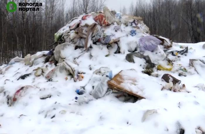 Свалку мусора на Преображенского в Вологде должны ликвидировать к декабрю
