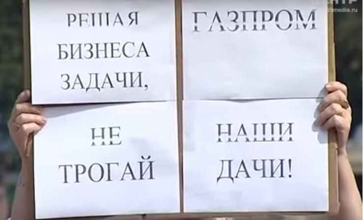 В центре Череповца митинговали дачники