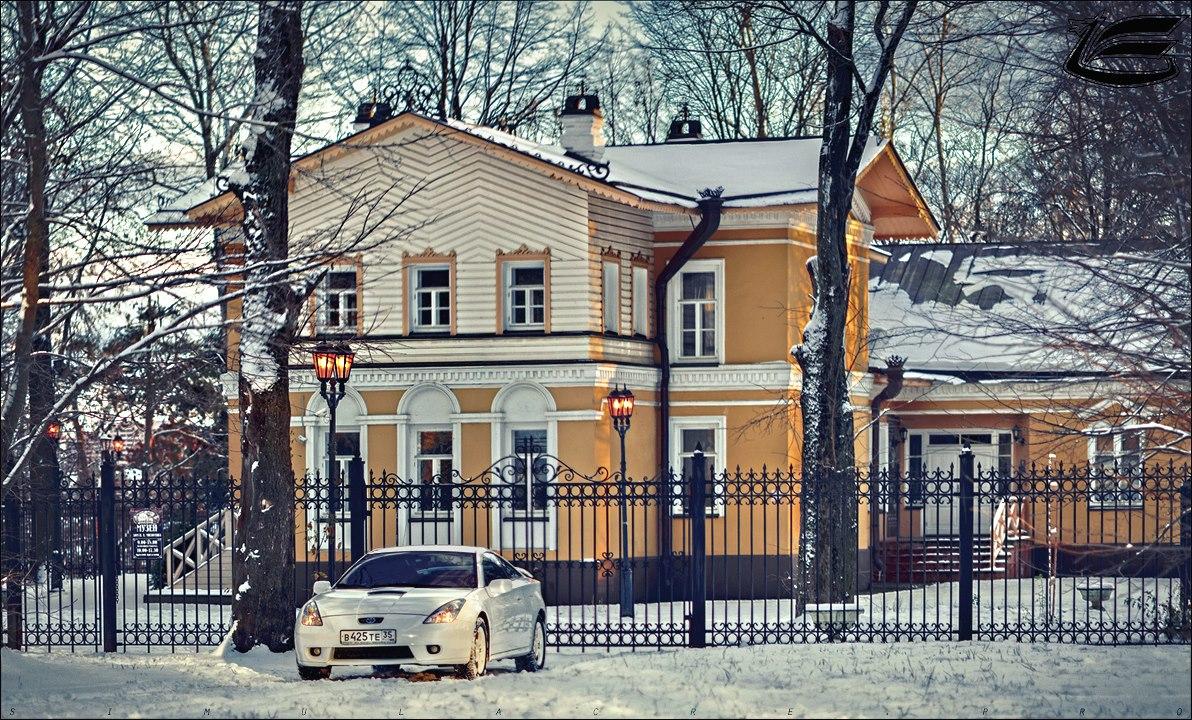 В Череповце хотят восстановить усадебный парк при доме Милютина