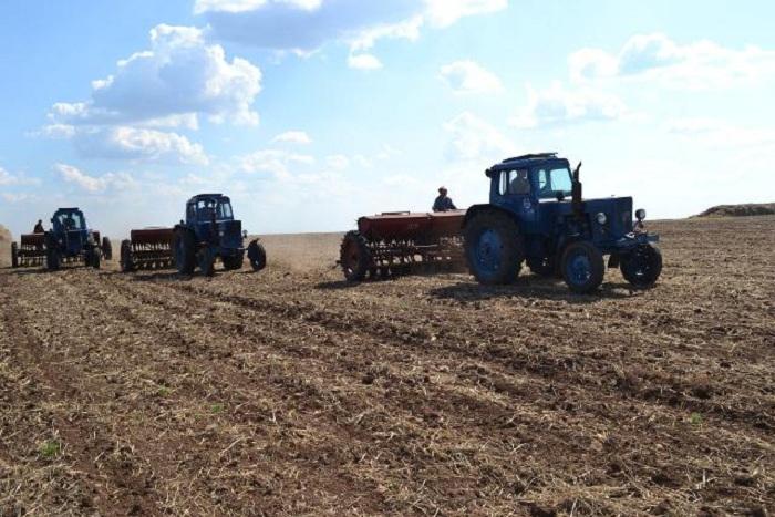 Посевные площади Вологодской области в этом году увеличатся почти в полтора раза