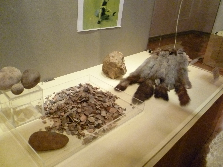 Выставка кремниевых фигурок, созданных первобытным человеком, открылась в Вологде