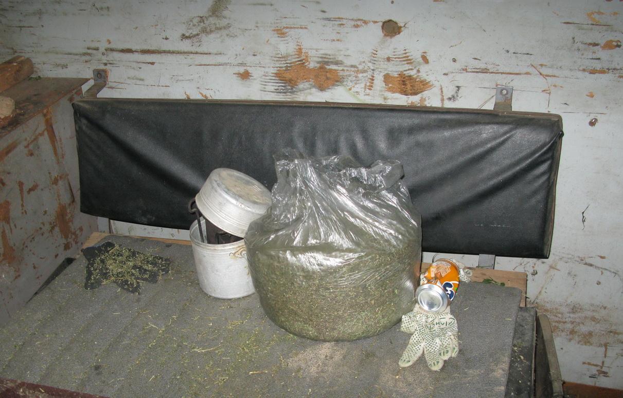 Семь килограммов марихуаны изъяли у двух жителей Череповецкого района