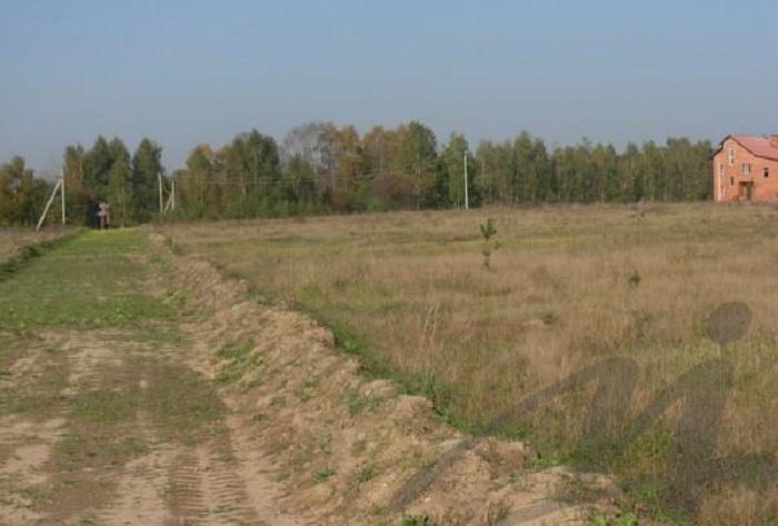 Крупные инвесторы в Вологодской области смогут получать земельные участки без торгов