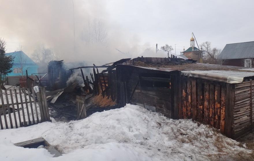 Коз, гусей и кур спасли из огня череповецкие пожарные