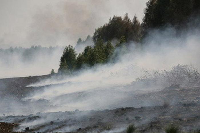 Дым от горящих торфяников долетел до Вологды