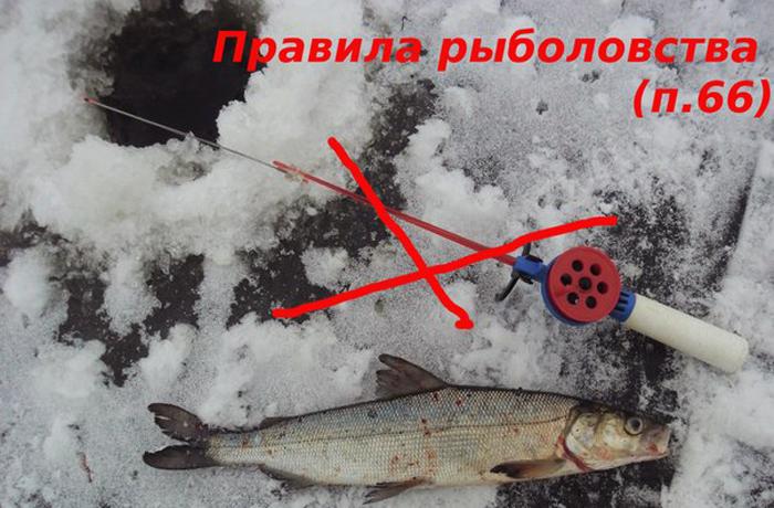 какие ограничения на рыбалку