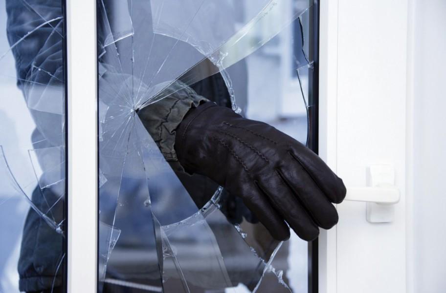 Жительница Череповецкого района использовала своего сына для кражи еды из дачных домов