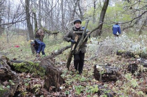 Ветераны и студенты будут восстанавливать старый парк в Соколе