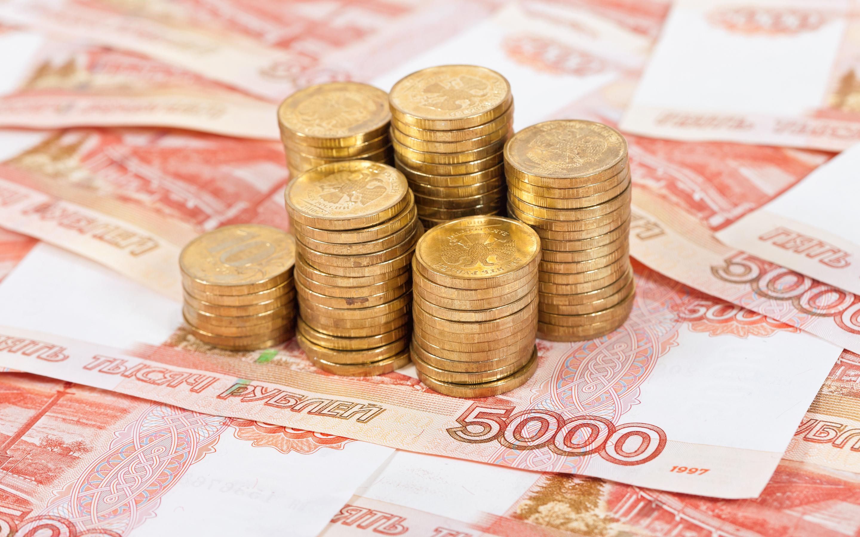 Лариса Каманина: «Центры выплат» позволят сэкономить Вологодской области 18 млн рублей в год