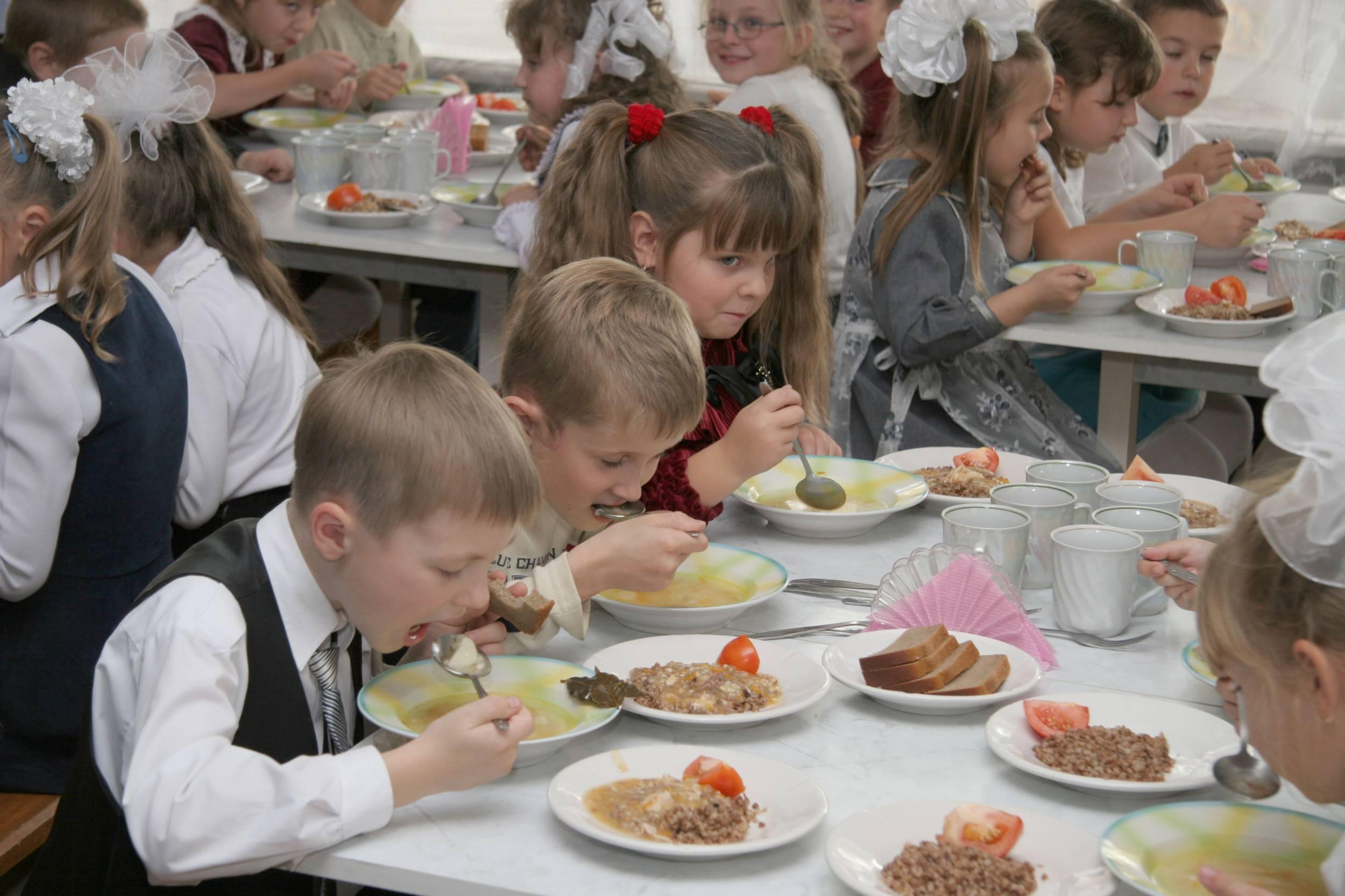 «Я не хочу питаться в школьной столовой…»:  директор  школы в Шекснинском районе прокомментировала изложение ученицы