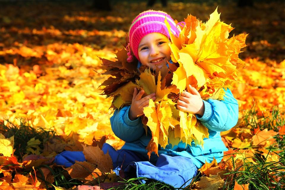 Картофельное шоу пройдет на празднике Осени в Череповце