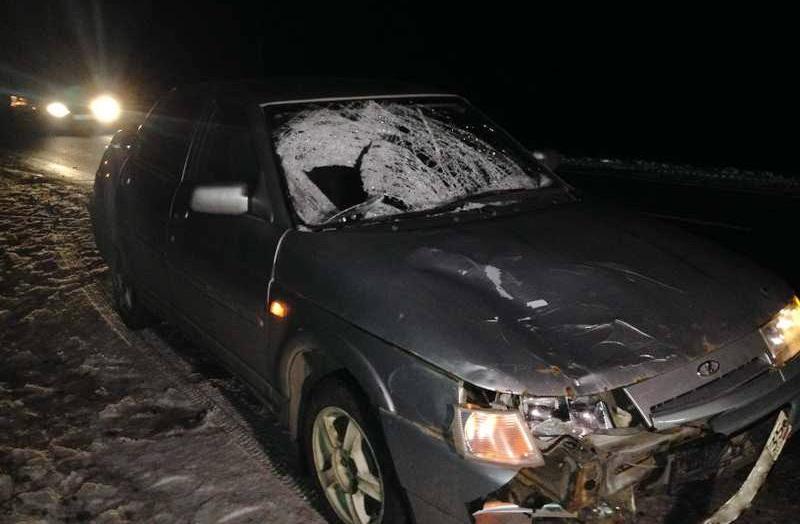 На трассе в Череповецком районе ночью насмерть сбили пешехода