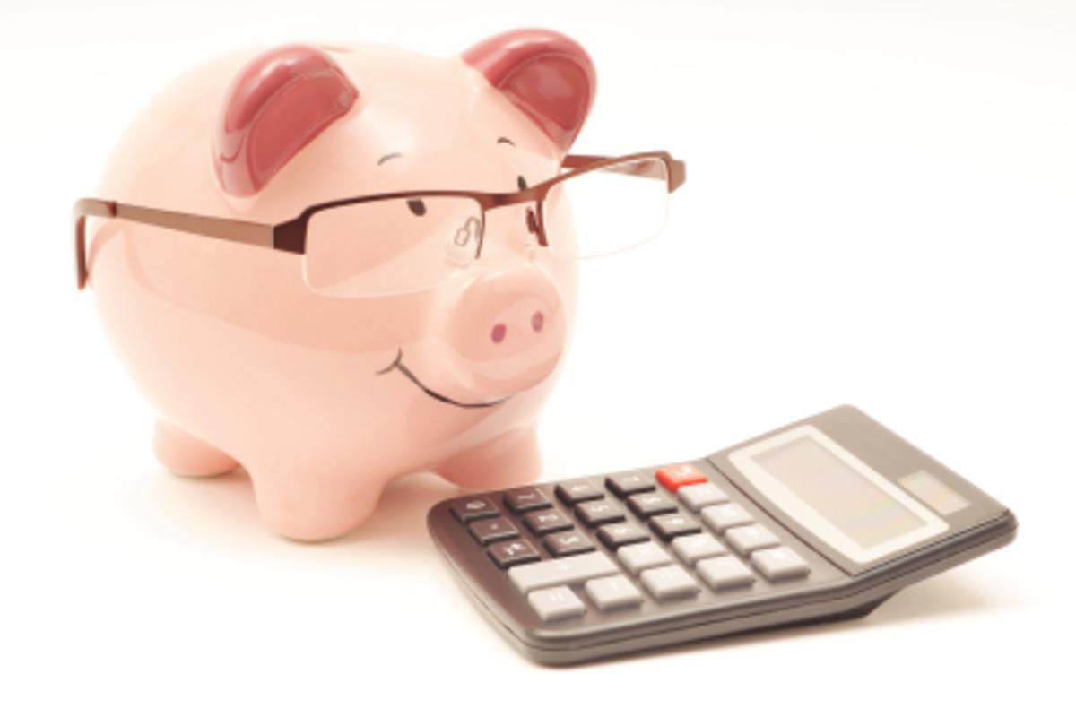 Вологодское правительство решило сэкономить на своей бухгалтерии