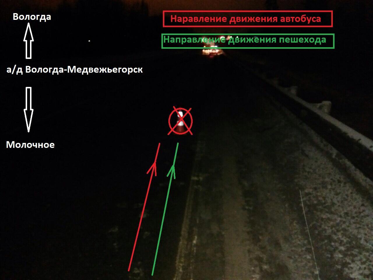 ВВологодском районе автобус сбил нетрезвого пешехода